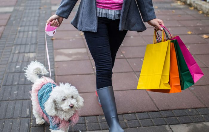 Young woman and a dog going for a walk with shopping bags