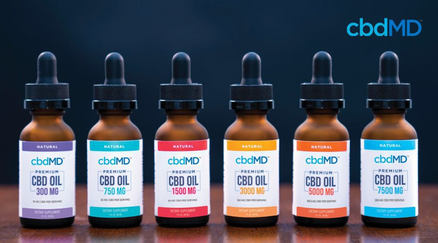 CBD oil tinctures for dogs