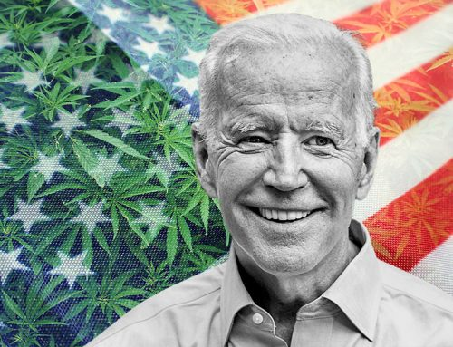 Will President Biden Legalize Marijuana, and What Will That Mean for CBD?