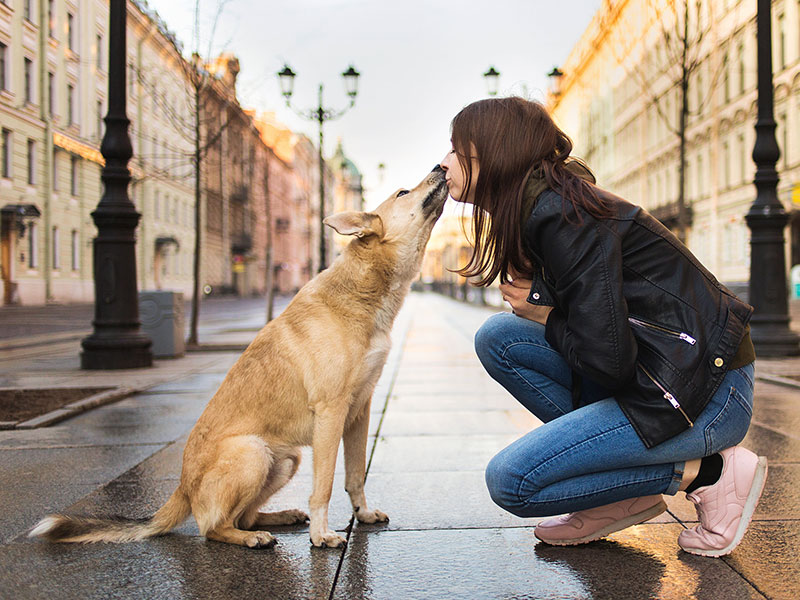 Woman walking with dog along street against facade of old buildings