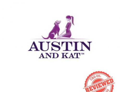 Austin and Kat: Review